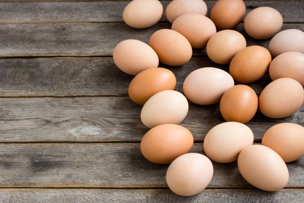 Blank Egg Carton Labels | SheetLabels.com®